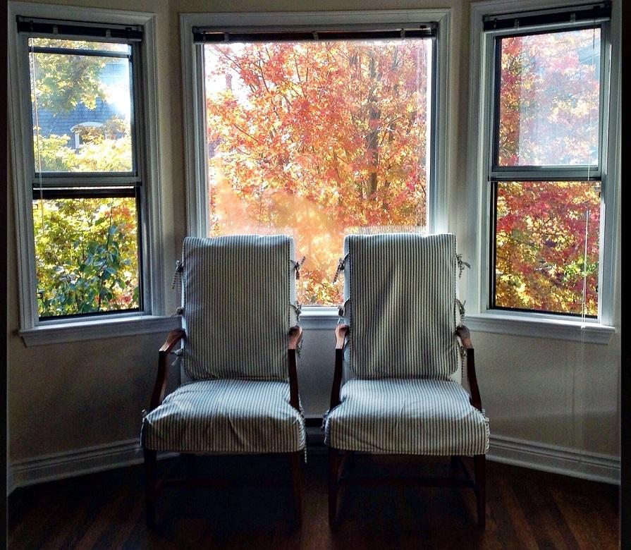 tree-view_